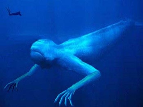 ningen criaturas humanoides artico Los Ningen, las criaturas humanoides del Ártico