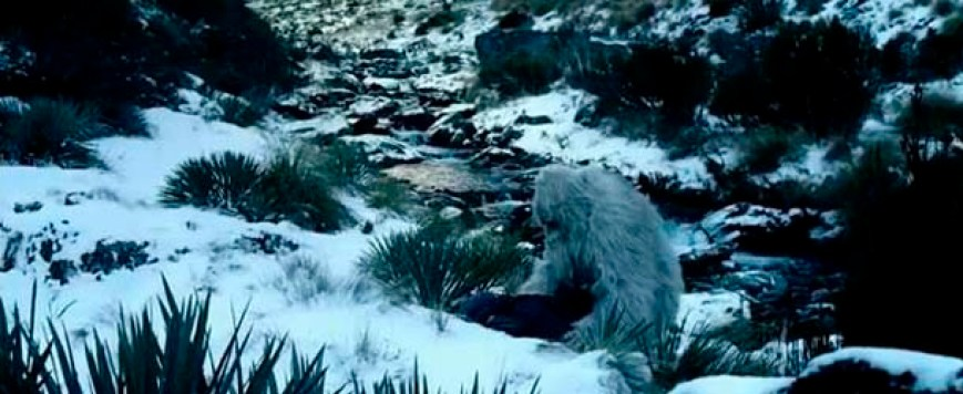 david attenborough yeti - El famoso naturista Sir David Attenborough decidido a encontrar al Yeti