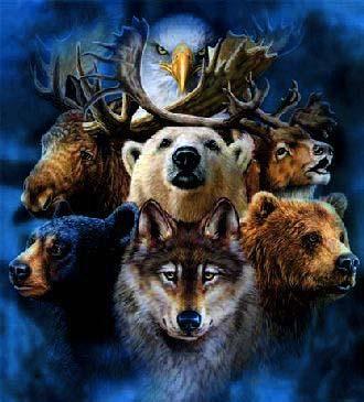 communication télépathique possible avec les animaux - La communication télépathique avec les animaux est-elle possible?
