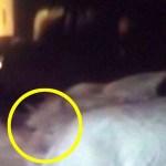 Abuela británica asegura estar siendo acosada por el fantasma del Monje Negro, y tiene un vídeo que lo demuestra