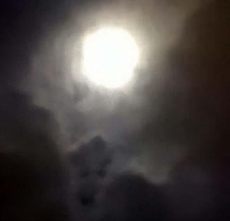 Visage de chien décédé - Une femme voit le visage de son chien décédé sur une photo qu'elle a prise à la pleine lune