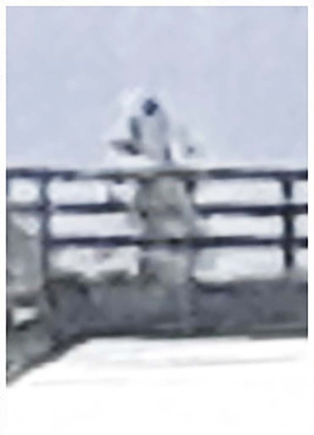 humanoid astronaut lake ness - Photograph a humanoid similar to an astronaut on a bridge in Loch Ness