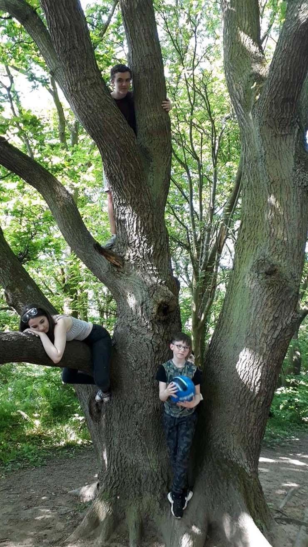 Ghost Child Son Forest England - Une mère photographie un sinistre enfant fantôme derrière son fils de neuf ans dans une forêt en Angleterre