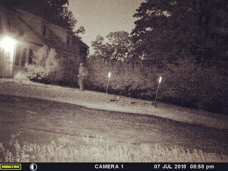 fantôme d'un soldat - Une caméra capture le moment où le fantôme d'un soldat retourne dans son ancienne maison