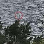 Una niña toma la mejor foto del monstruo del lago Ness de la historia