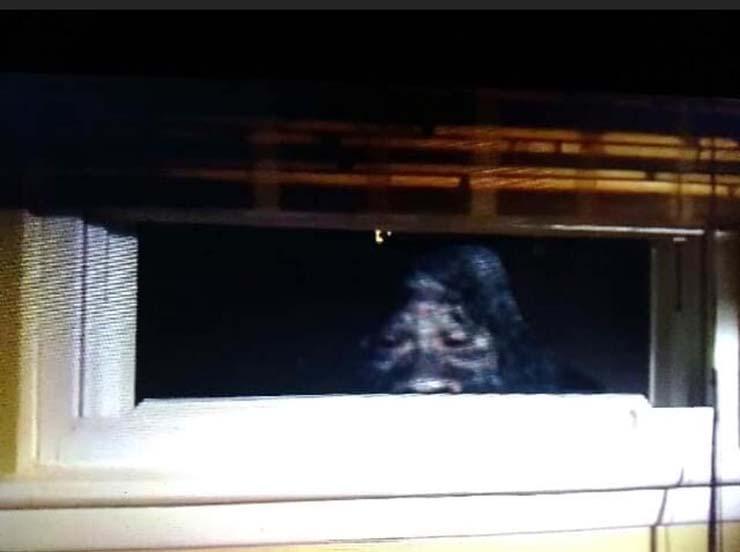 bigfoot casa colorado - un couple marié photographie un bigfoot regardant par la fenêtre de leur maison dans le Colorado