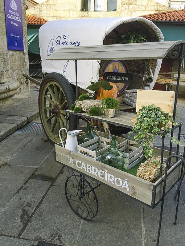 cabreiroa-110-aniversario-i