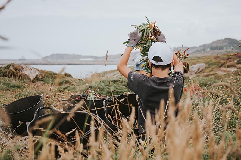 Voluntario de Hijos de Rivera en la actividad de protección ambiental