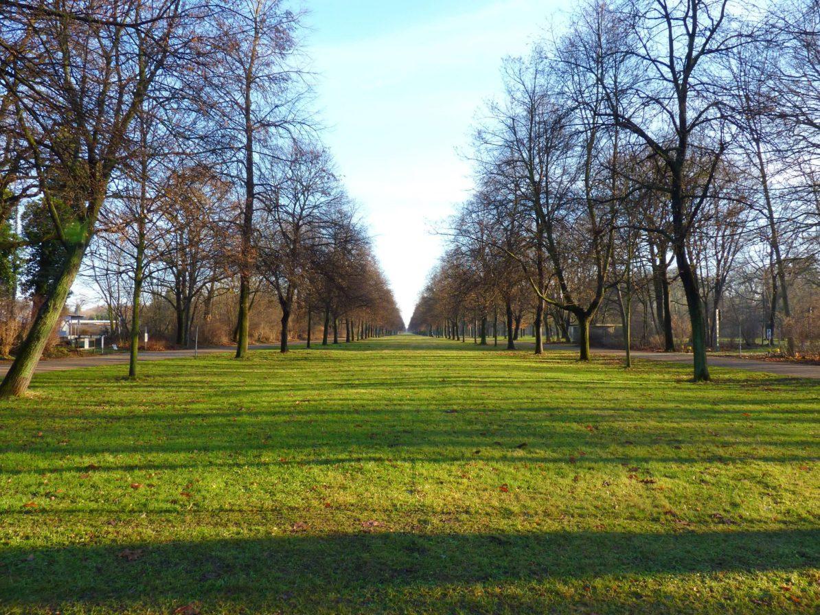 Grosser Garten 01 Dresden Alemanha Mundo Indefinido