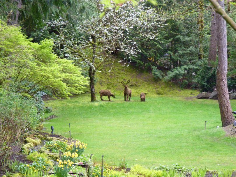 Butchart Gardens 22 Victoria Canadá Mundo Indefinido