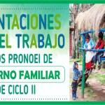 Orientaciones para el trabajo en los PRONOEI de ENTORNO FAMILIAR – Ciclo II