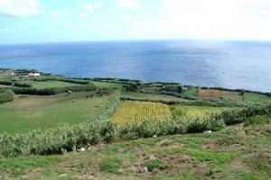 Ilha de São Miguel - Açores. Foto: Mundo Lusíada