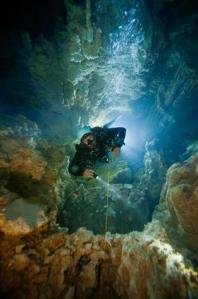 Las últimas imágenes impresionantes en alta mar del veterano fotógrafo muerto mientras filmaba bajo el agua – 'Cascade Room' en los agujeros azules en las Bahamas