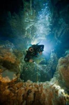 Las últimas imágenes impresionantes en alta mar del veterano fotógrafo muerto mientras filmaba bajo el agua - 'Cascade Room' en los agujeros azules en las Bahamas 5