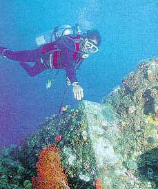 Pirámides submarinas en Japón - Antigua Ciudad Bajo el agua 8