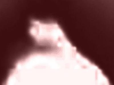¿Ángel brillando o extraterrestre grabado en una cámara de ciervos en N. Georgia? – 2013