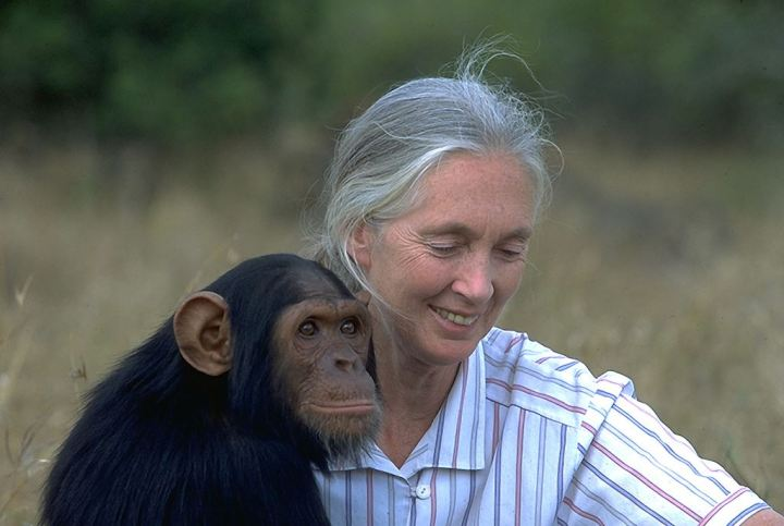 """Hace 11 años, en 2002, Jane Goodall dijo """"Estoy segura de que existen los Bigfoot"""""""