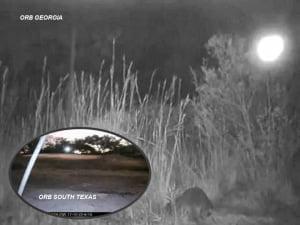 OVNIs grabados en cámaras para ciervos en el sur de Texas y Georgia – 26 de noviembre 2013