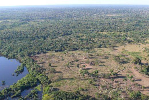 Misteriosos anillos en la tierra son anteriores a la Selva Amazónica