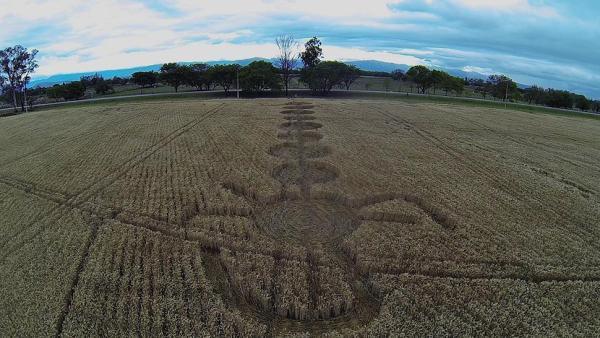 Así se ven los agroglifos de Chicoana