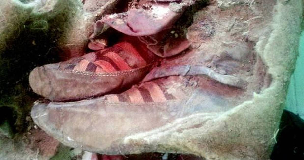 ¿Momia de 1.500 años con botas de Adidas?