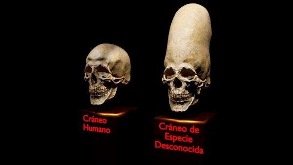 Los Cráneos de Paracas eran los Nefilim