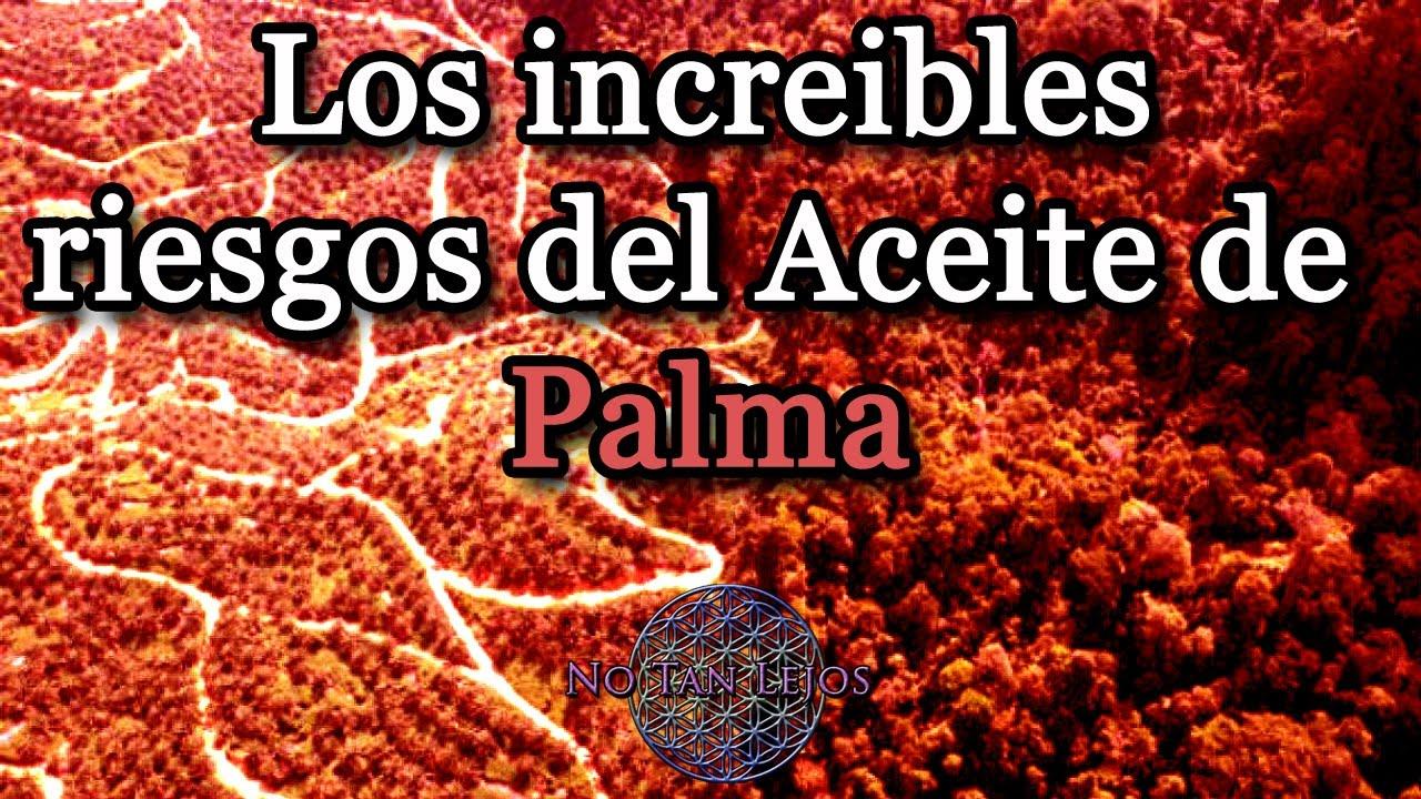 Los peligros del aceite de palma