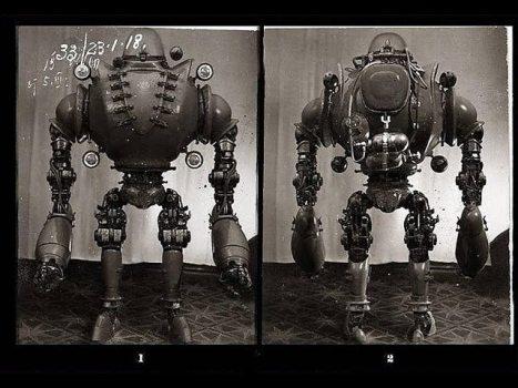 El Increíble Perro Robot de los Ruso, Proyecto Collie