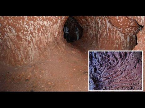 Túnel de 10 mil Años de Antigüedad Excavado por Animales Gigantes