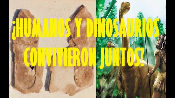 ¿ Humanos y Dinosaurios convivieron juntos?