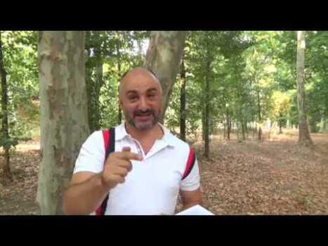 Q Anon y Deep State – Rafa Pal (Serie de vídeos)