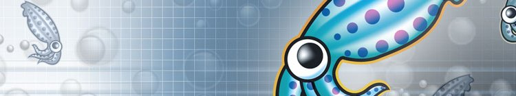 Squid e Windows Live Messenger 2009