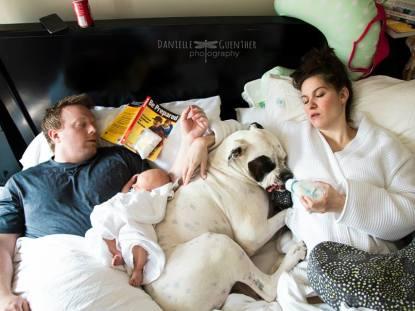 Fotos da vida em família