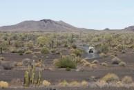 76km de estradas dentro da reserva
