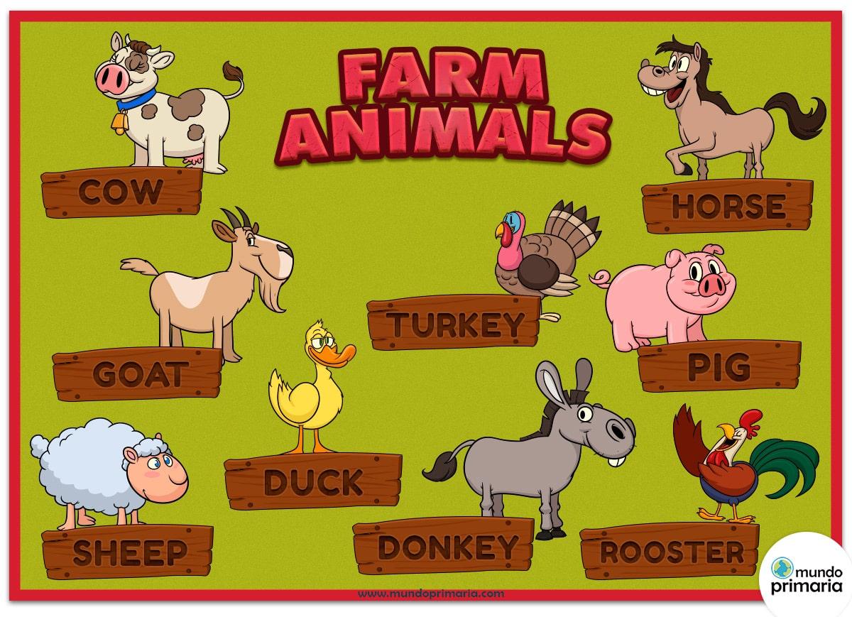 Infografia De Los Animales De Granja En Ingles