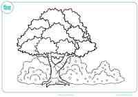 Aprende las estaciones del ao coloreando estos dibujos