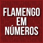 flamengo em numeros