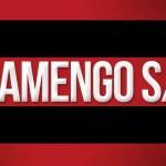 Flamengo: em 3 trimestres de 2017, arrecadação do Sócio-Torcedor já supera todos os anos anteriores
