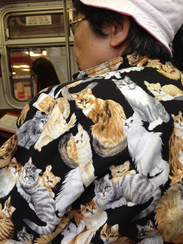 cat_shirt