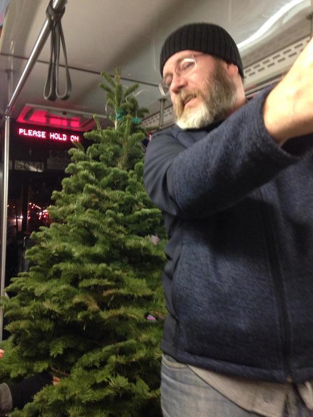 tree_john1