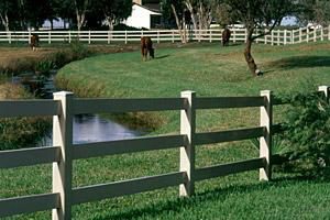 A vinyl horse fence protects your horses munson inc.
