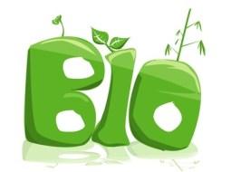 Bio-Produkte:  Bedeutung des Verzehrs
