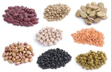 Protein: pflanzliche oder tierische?