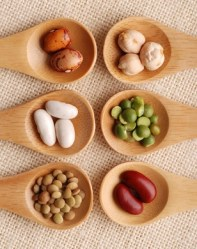 Entdecken Sie Nährstoffe für eine gute Gesundheit II