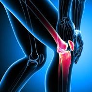 Knieschmerzen: Kräuter und Behandlung für die Heilung