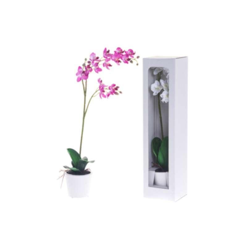 Orkidea Ruukku