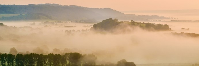 Misty-Southdowns