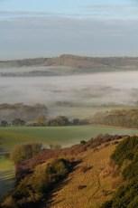 Winch-Hill-Mist