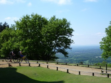 Two mountainbikers survey the land before them from a high vista