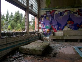 A dirty mattress separates a wrecked indoor pool from a smashed glass wall